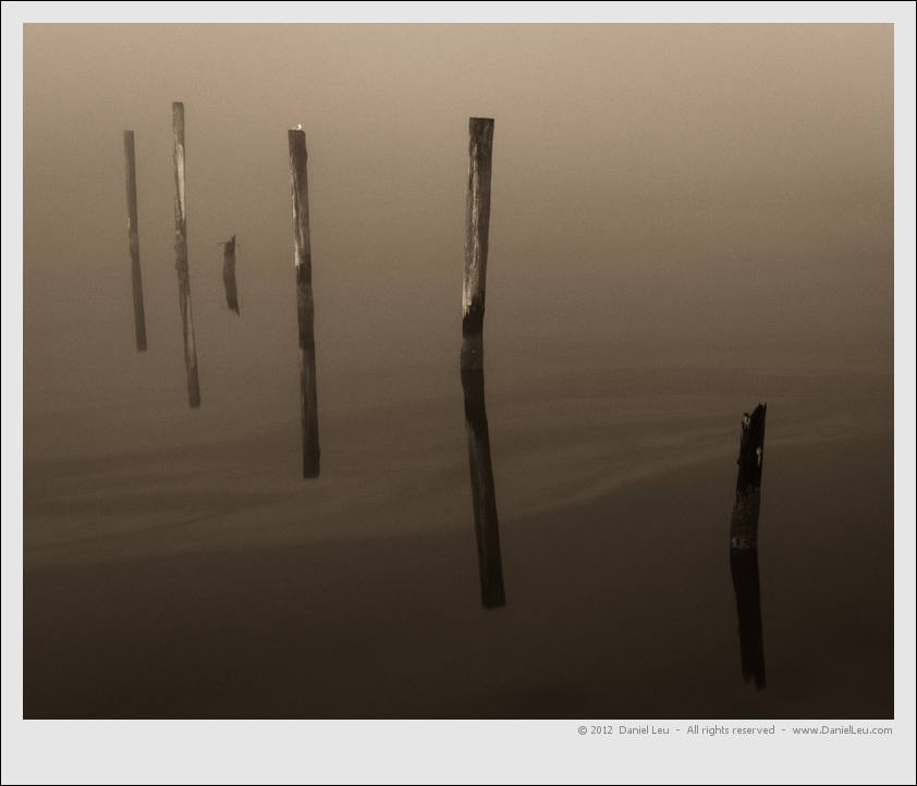 Pylons in the Siuslaw river