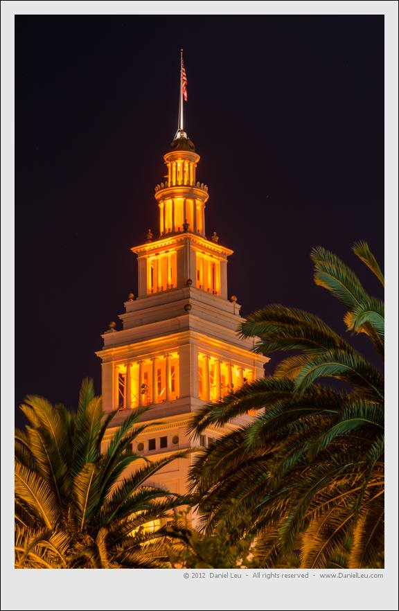 Ferry Building tower shinning through palm trees